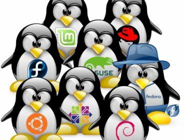 Дистрибутивы Linux для начинающих